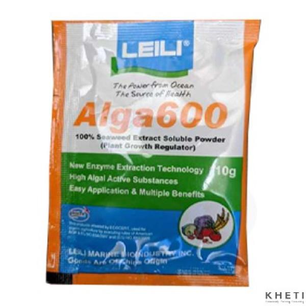 Alga600