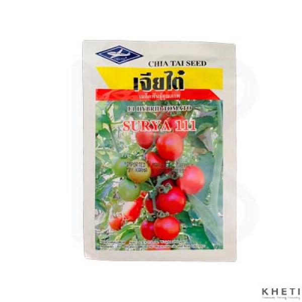 Tomato (Tamatar ko Biu) Surya (111) / NC