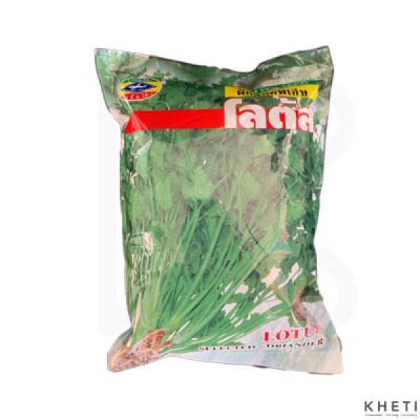 Dhaniya (Corriander Seeds)