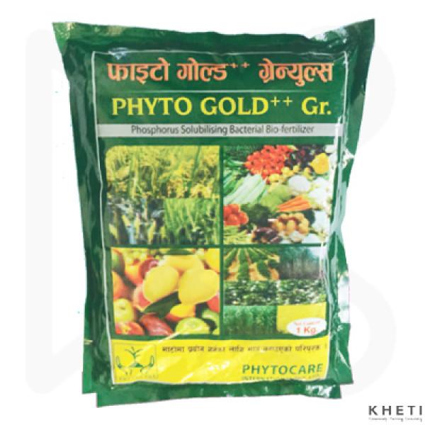 Phyto Gold ++ GR
