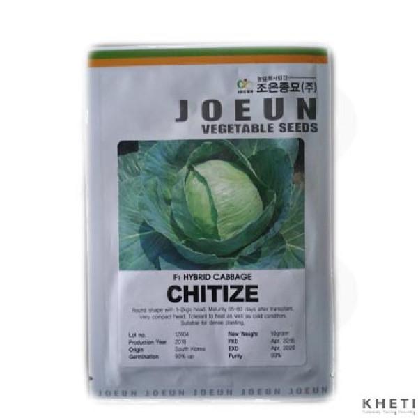 F1 Hybrid Cabbage_Chitize_SN (Bandakopi ko biu)