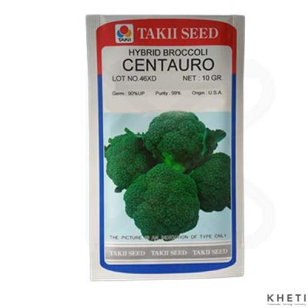 Broccoli_Centauro_SN