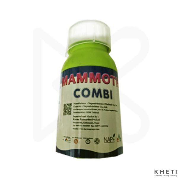 Mamoth Combi